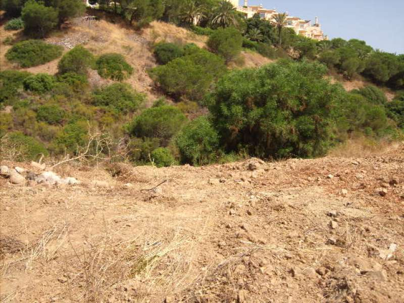 Residential Plot in Elviria
